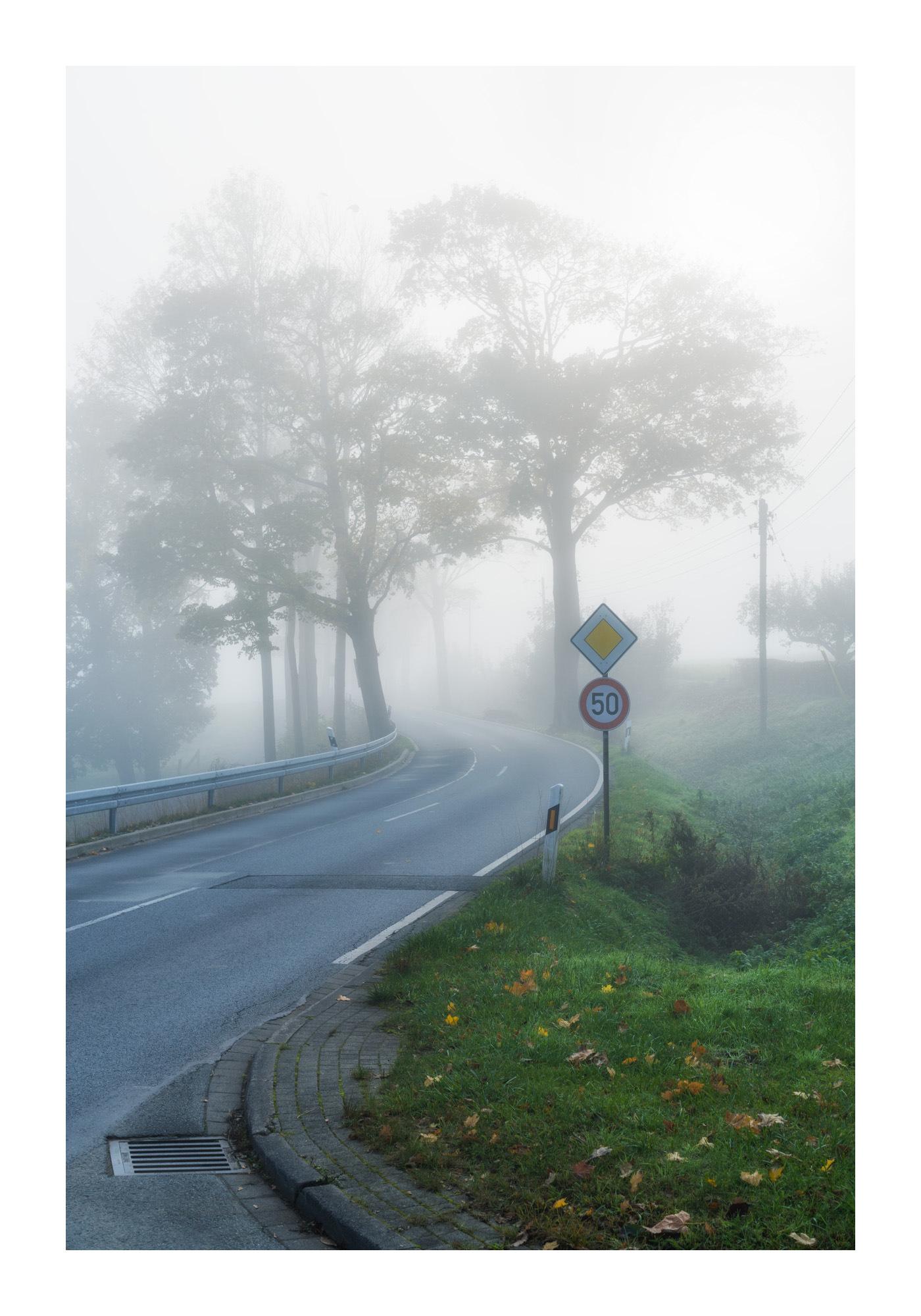 Landstraße im Morgennebel